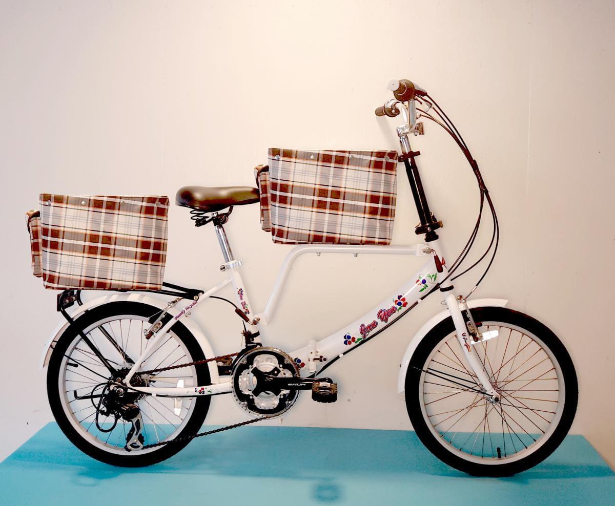 20吋 21速 SHIMANO 摺疊 中籃 後架籃 寵物單車 附中柱架(立車用)