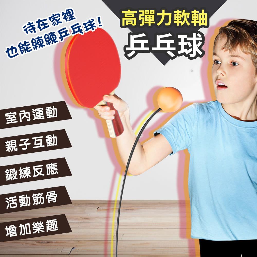 親子乒乓球訓練器 2