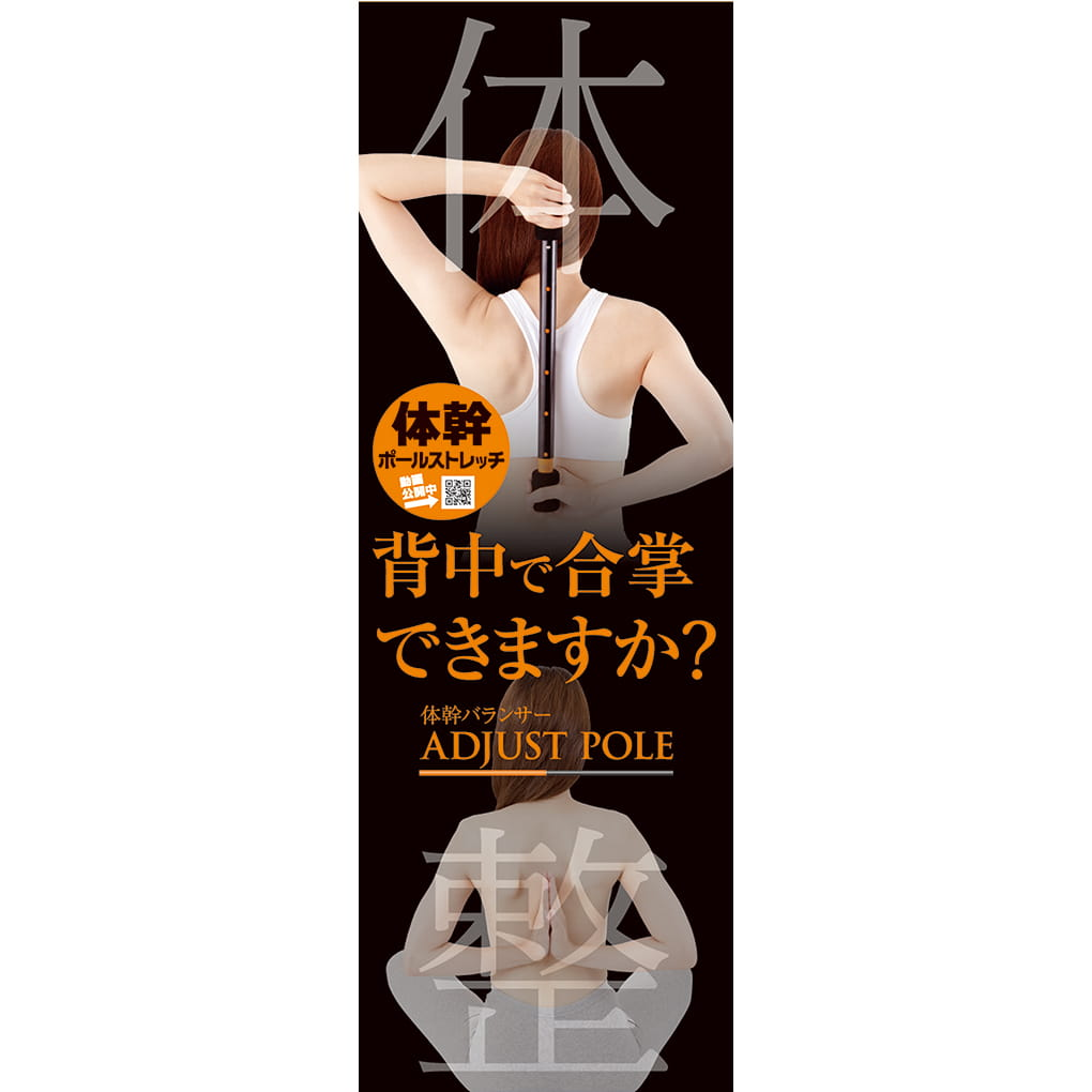【Alphax】日本進口 體幹鍛鍊平衡器 8