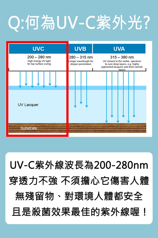 【勝利者】LED.USB紫外線殺菌袋消毒包 4