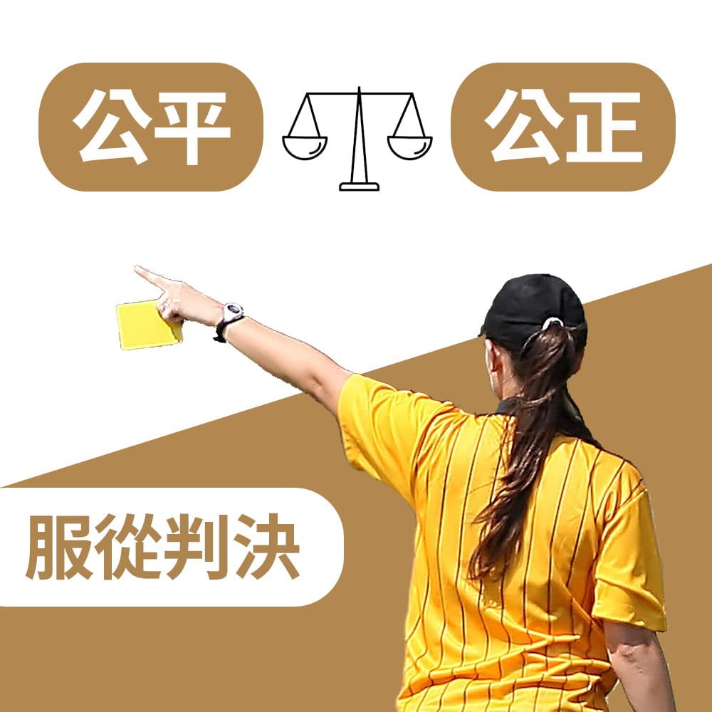 【NORDITION】紅黃牌 7