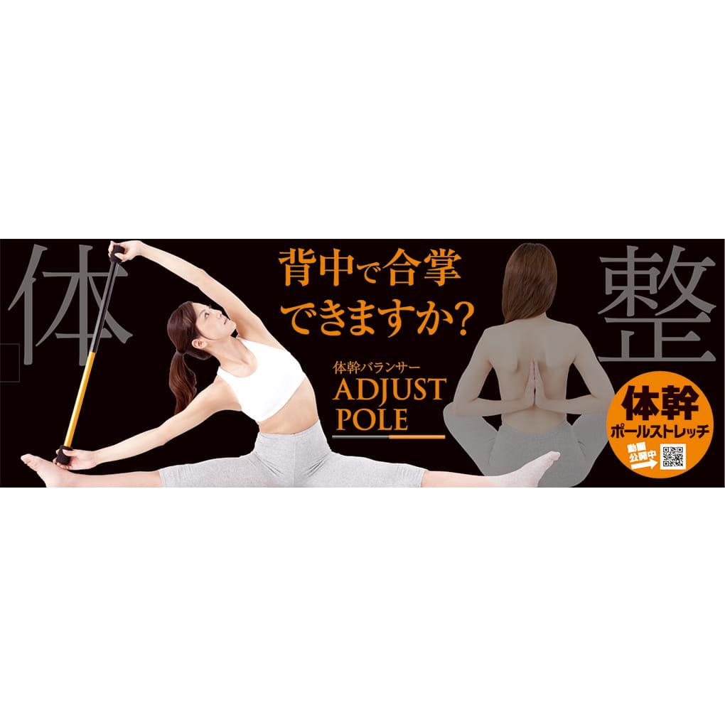 【Alphax】日本進口 體幹鍛鍊平衡器 7