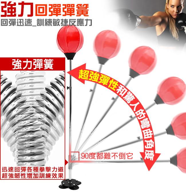 吸盤底座立式速度球(送拳擊手套+打氣筒) 8