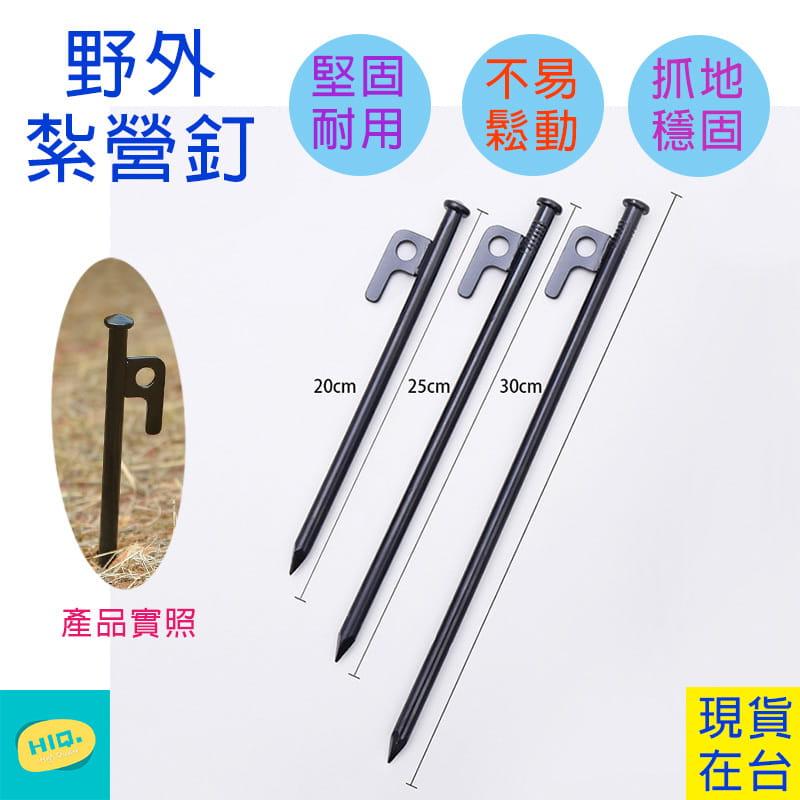 【高品質】20CM露營釘10支(附收納包)  不鏽鋼營釘