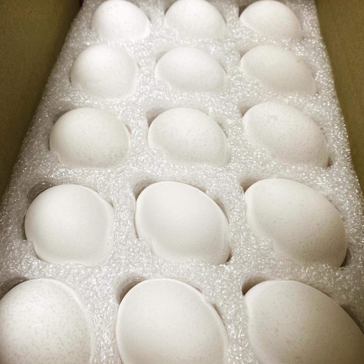 小農的蛋30顆(新鮮無藥殘無抗生素的雞蛋)-上豐蛋品有限公司(雞蛋.蛋白液.香蛋) 0