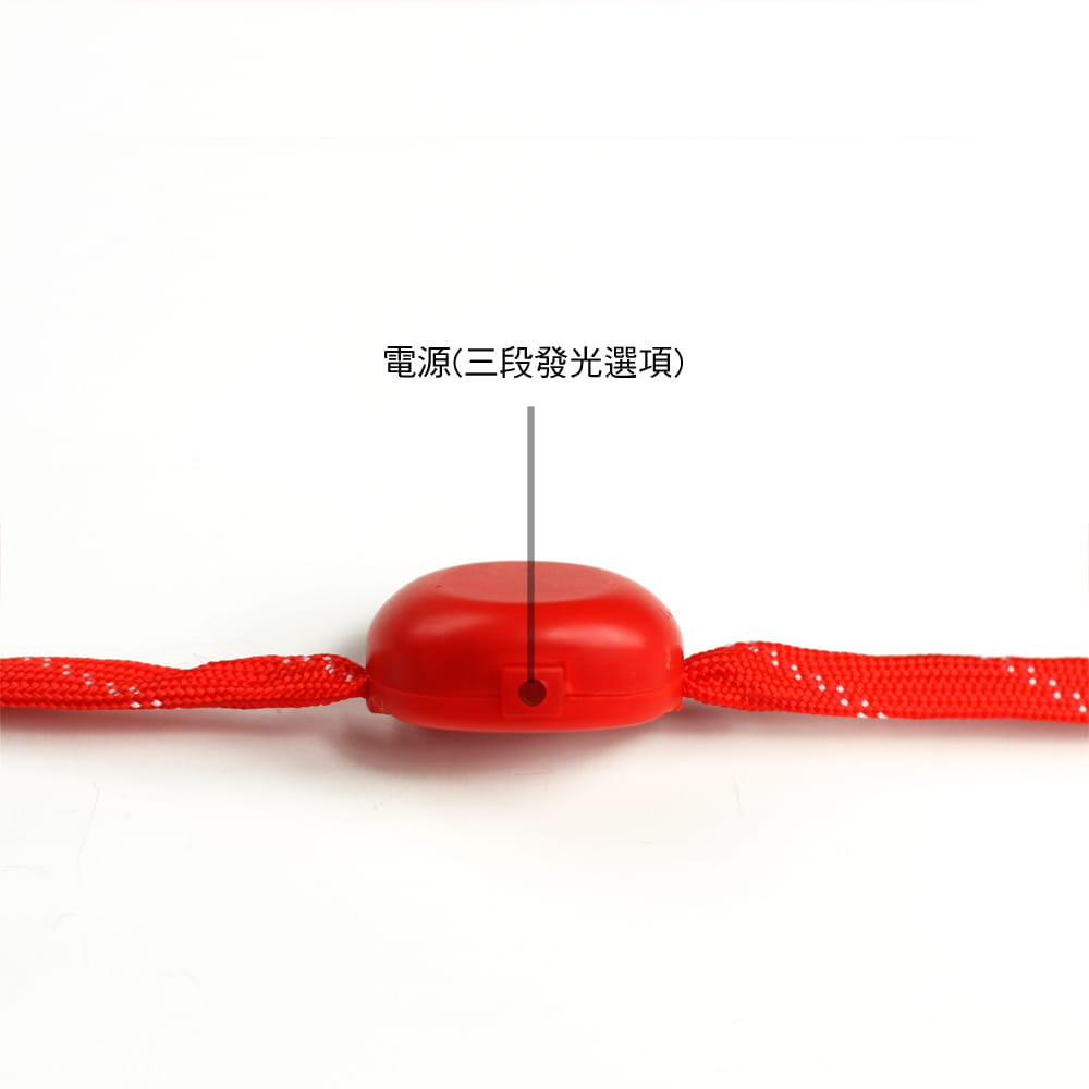 【LED 三段式發光鞋帶】 3