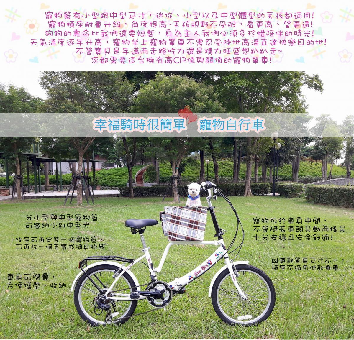 台製 20吋 6速 SHIMANO 摺疊 小籃 寵物腳踏車 5