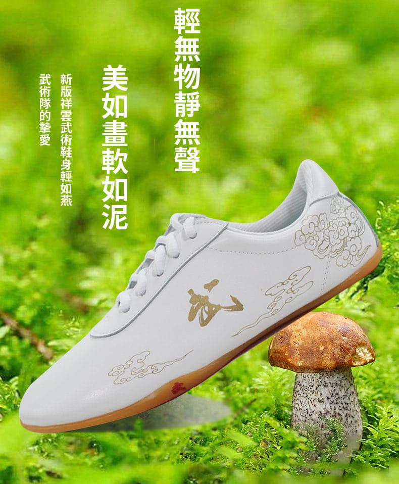武術鞋太極鞋男女牛筋底薄底練功夫鞋 3