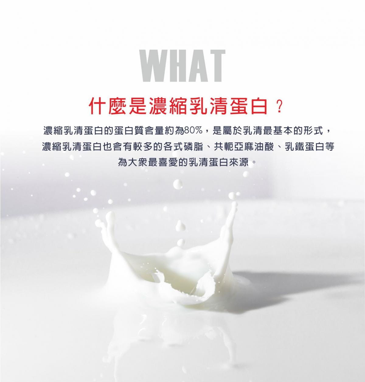 【LEXPORTS 勵動風潮】IS PROTEIN 乳清蛋白飲 - 單包裝(25g/包) 2