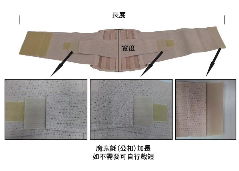 【居家醫療護具】【THC】健康透氣軟背架-H3327(護腰) 3
